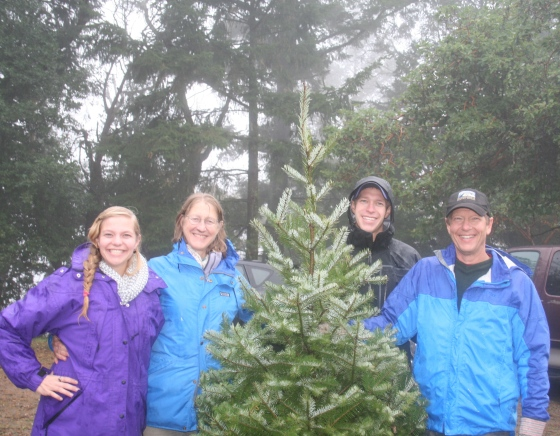 Christmas Tree Farm 2014