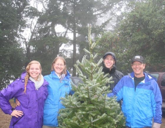 Christmas Tree Farm 2014