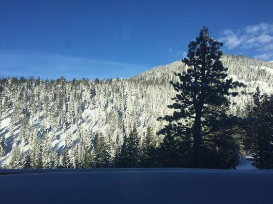 MLK Weekend in Tahoe